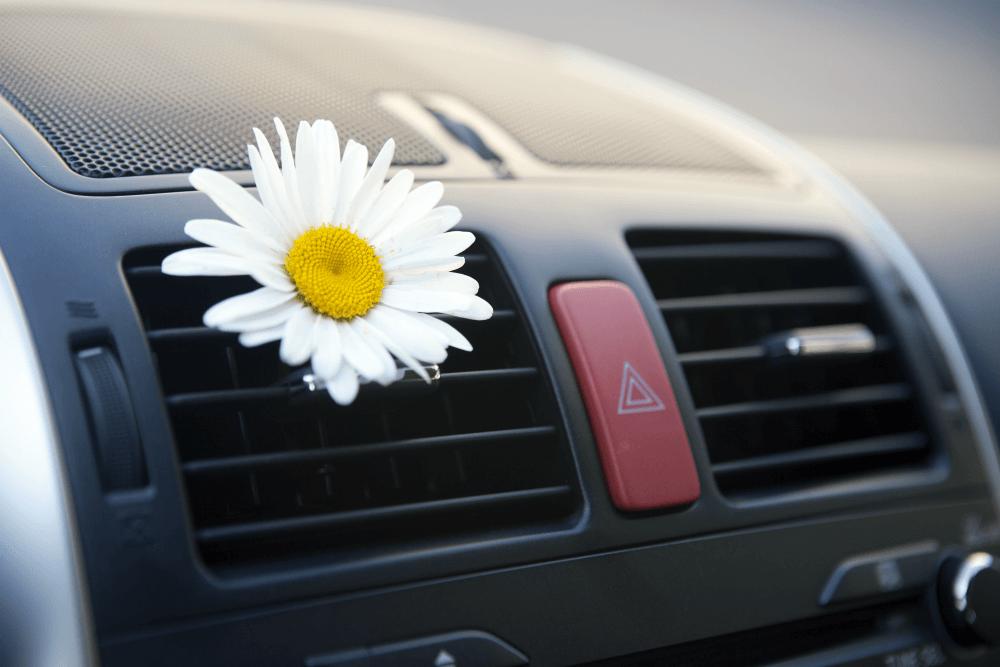 Приятный запах в автомобиле