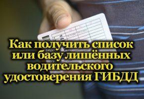База данных ГИБДД лишённых водительского удостоверения