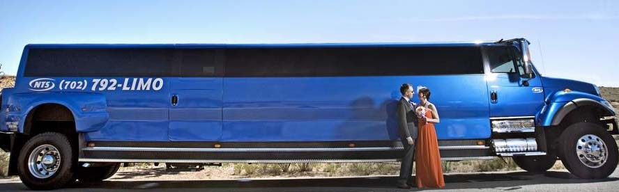 Big Blue Limo 13m
