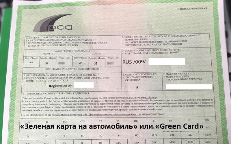 Пример Зелёной карты